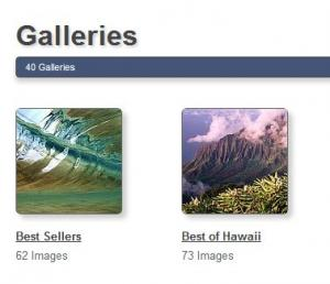 Use Featured Galleries to Find the Best Artwork